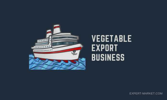 Crucial steps to take while starting a vegetable export business in India