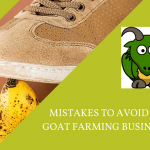 MISTAKES TO AVOID IN GOAT FARMING BUSINESS-min