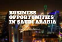 investment opportunities in saudi arabia