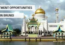 business opportunities brunei