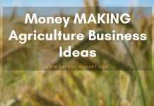 agriculture business ideas profit