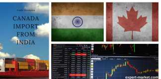 what does canada import from india?