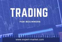 trading tips for beginners
