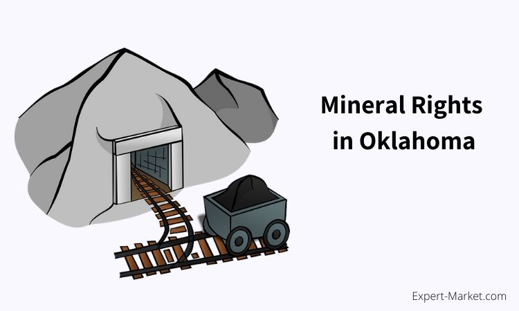 Mineral Rights Value