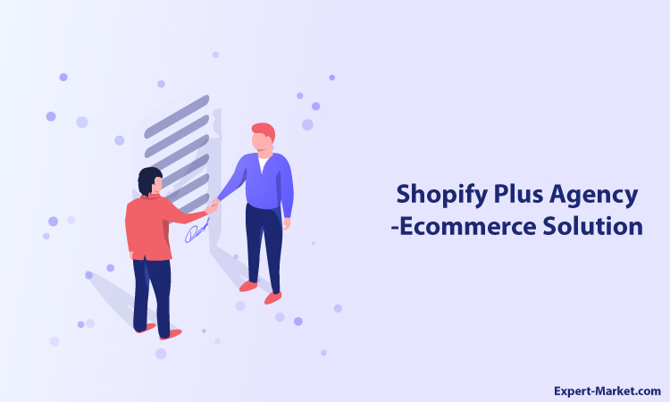Shopify Plus Agency - Ecommerce Solution